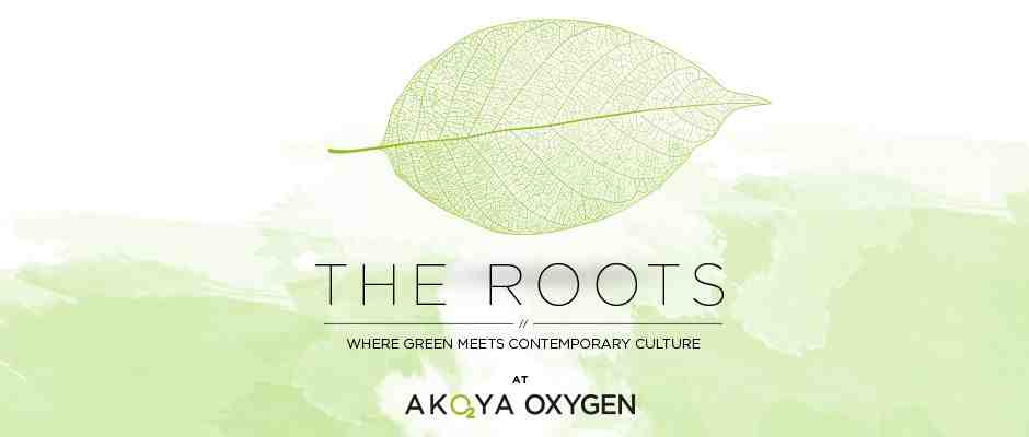 the roots akoya
